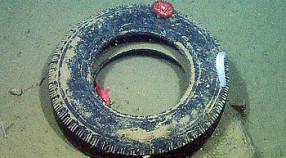 tire-350