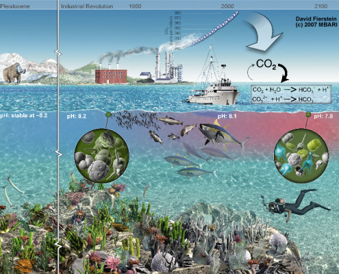 Artist's rendition of anthropogenic CO<small><p id=