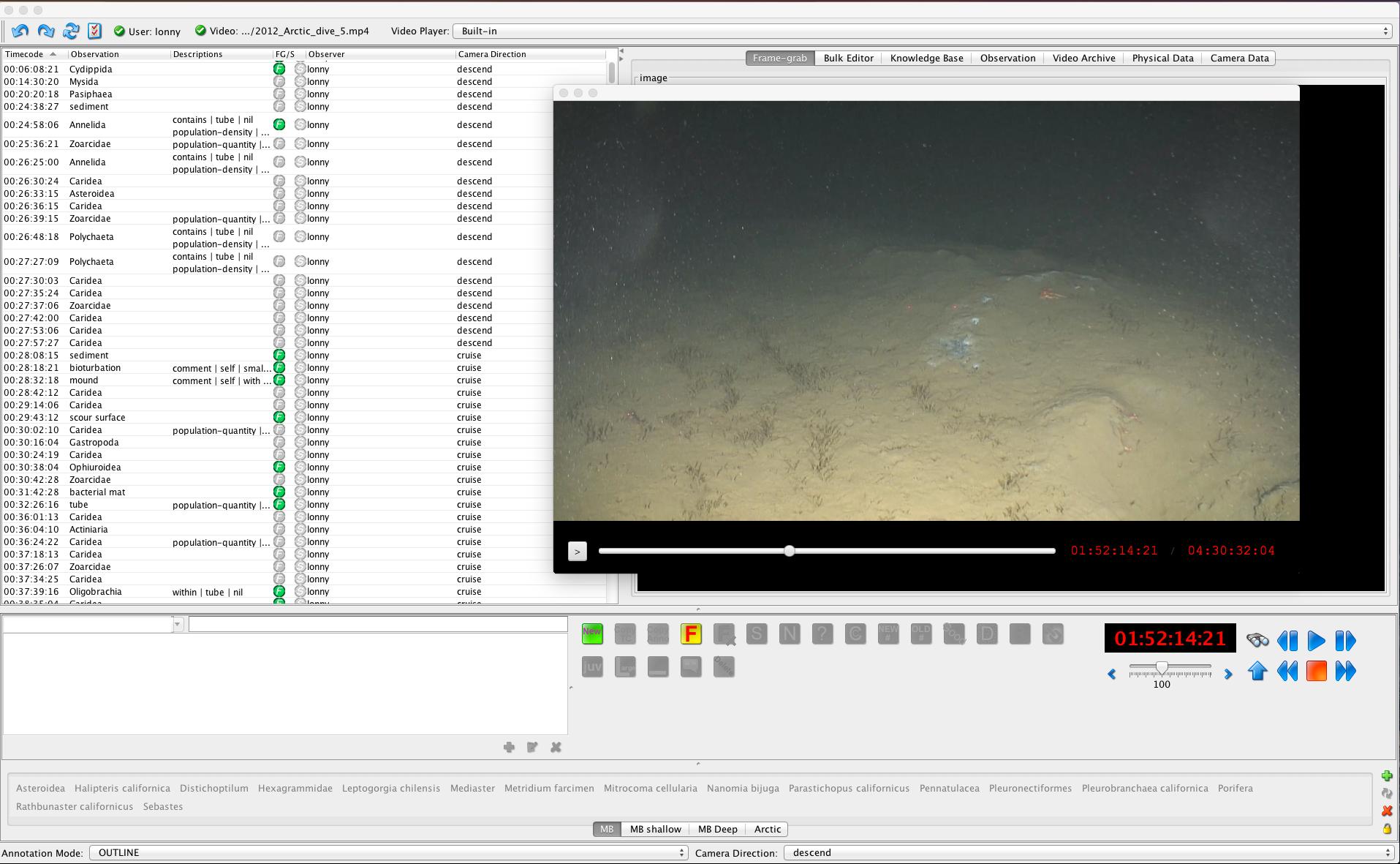 vars_annotation_video_files