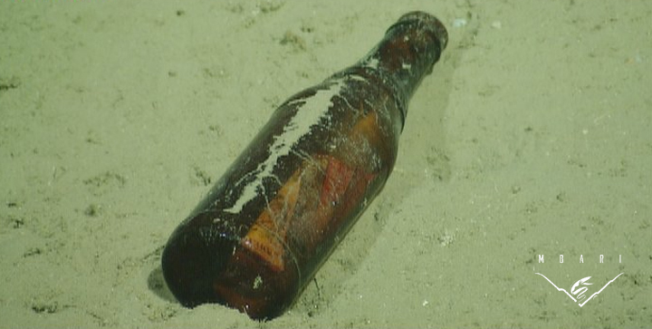 Marine Debris<br> Glass Bottle