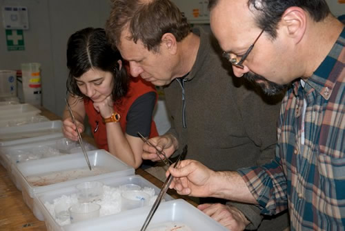 Ron Kaufmann, Larry Lovell and Stephanie Bush sort MOCNESS samples. Photo by Debbie Nail Meyer.