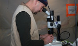 Rob Sherlock uses a microscope to identify an unknown jelly from a MOCNESS trawl. Photo by Debbie Nail Meyer.