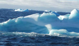 """A blue-streaked iceberg floats among the many we saw while passing through """"iceberg alley."""" Photo by Johnny Pierce."""