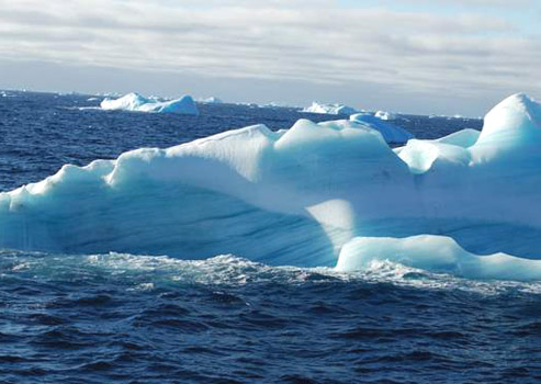 A blue-streaked iceberg floats among the many we saw while passing through