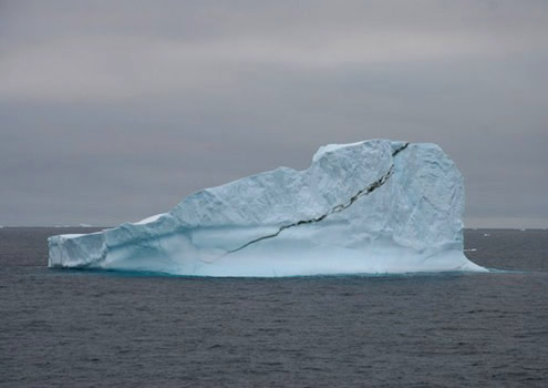Some iceberg fragments reveal liquid blue colors. Photo by Debbie Nail Meyer.