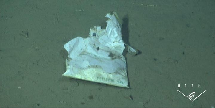 Marine Debris<br>Potato Chip Bag