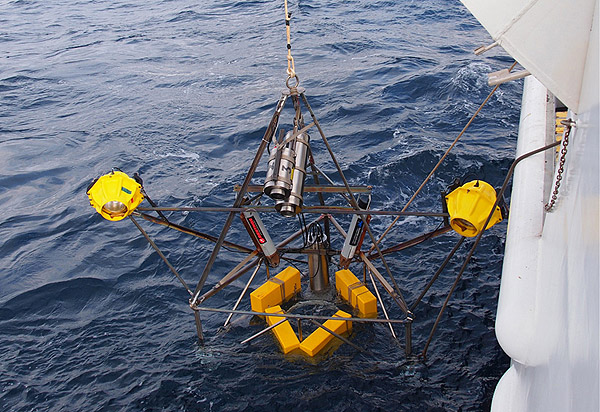 The camera tripod, recovered this afternoon, photographs the seafloor with its camera (the two cylinders in the center) and flash (the two yellow spheres on either side). Photos will be downloaded, batteries recharged, and then the tripod will be redeployed tomorrow. Photo: Carola Buchner.