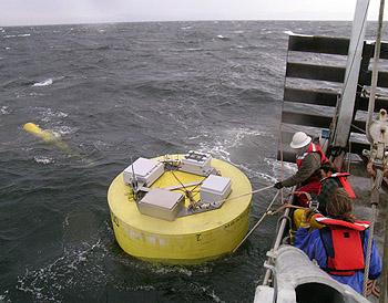 buoy-wranglers2-350