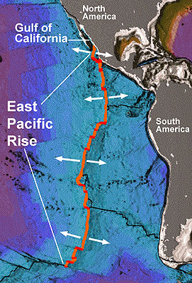 From: NOAA http://upload.wikimedia.org/wikipedia/commons/4/44/Earth_seafloor_crust_age_1996.gif