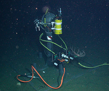 Vehicle = Tiburon Tiburon Dive# = 1089 No match for position Depth= 3162.8 m Temp= 1.601 C Sal= 34.458 PSU Oxy= 2.59 ml/l Xmiss= 91.4% Source= digitalImages/Tiburon/2007/tibr1089/DSCN1643.JPG Epoch seconds= 1177345958 Beta timecode= 00:09:29:16