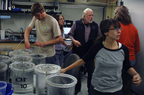 "The ""organized frenzy"" of post-dive sample processing."