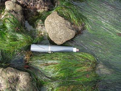 submerged_sensor400