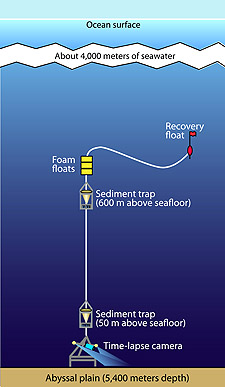 diagram for ocean diving into the sargasso sea mbari  diving into the sargasso sea mbari