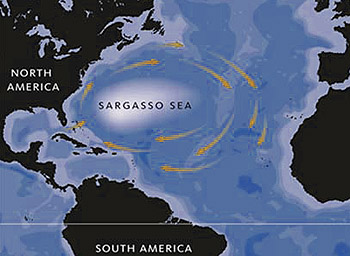 sargasso-sea-map-350