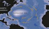 sargasso-sea-map-crop