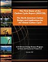 carbon-rpt-cover-100