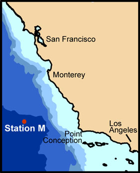 Map of Station M off the California Coast. The darkest shade of blue indicates water that is over 4,000 meters (about 13,100 feet) deep. Image:(c) 2007 MBARI