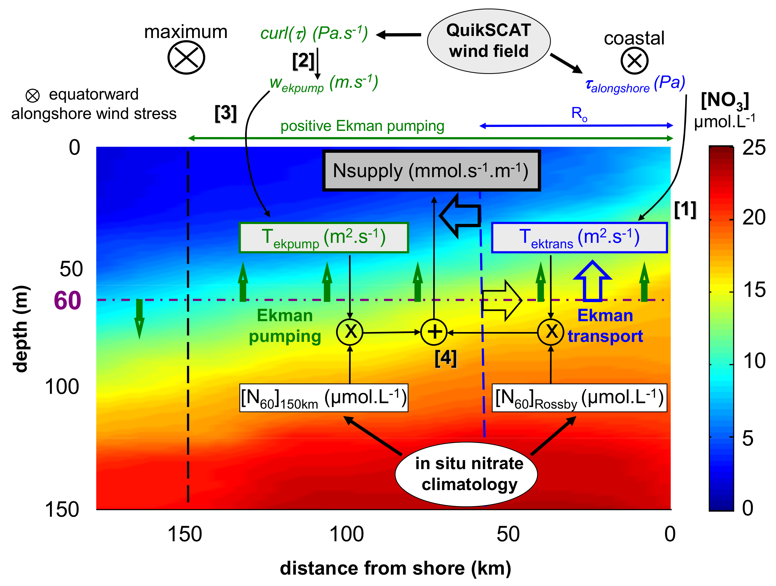 Nitrate supply estimates in upwelling systems mbari schematic representation of the nitrate supply calculation from satellite derived ekman transport and pumping and in situ nitrate concentration in an ebus ccuart Choice Image