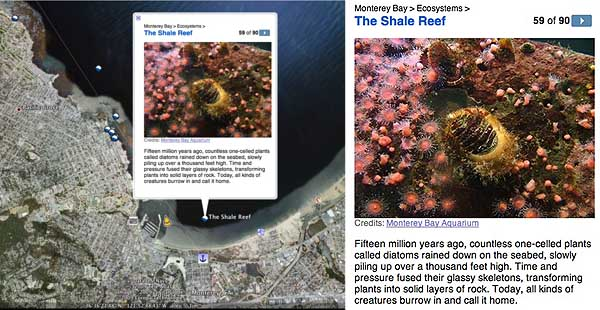 This image from Google Earth 5 shows the southern portion of Monterey Bay and a pop-up window (enlarged, at right) that describes a shale reef just offshore of the city of Monterey.