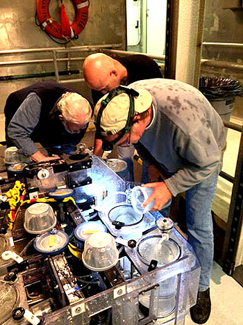 When the ROV is secured on board, the MRS drawer is deployed so the science team can access the samples. Bruce Robison, Rob Sherlock, and Kim recover the Nanomia bijuga from the MRS specimens for further analysis in the lab.