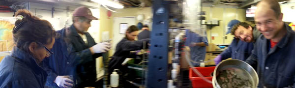 MBARI and NOAA scientists work together to process sediment cores. Some cores are sieved to separate animals from mud, then preserved, while others are subsampled for sediment tracers (organic content, grain size, ATP, other).