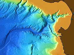 Sediment in Monterey Canyon flows to depths of more than 3,500 meters. Image: (c) 2000 MBARI