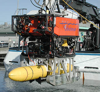 This close-up view shows the special mounting harness and sled that attaches the AUV to ROV Ventana. The gray sled beneath the ROV normally holds a large spool of fiber-optic cable, and is used to lay this cable along the sea floor as part of MBARI's Ocean Observatory efforts. Image: Todd Walsh (c) 2004 MBARI
