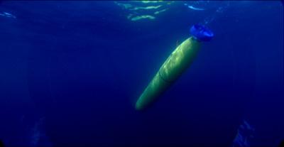 Oceanographers Converge On Monterey Bay Mbari