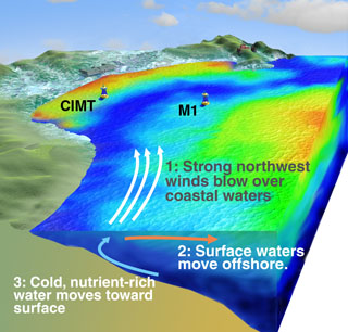 This diagram shows a highly simplified view of upwelling in Monterey Bay. Cold water is shown in blue; warm water is shown in yellow and red. The new CIMT mooring and MBARI's M1 mooring are shown in the background. (c) 2004 MBARI