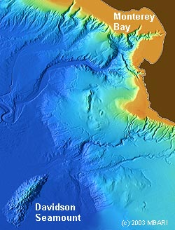 Davidson Seamount is located southwest of Monterey Bay, beyond the continental shelf and the continental rise. Image: (c) 2003 MBARI