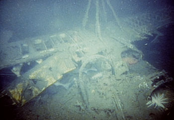 This photo was taken during a 1991 MBARI survey of the wreck of the USS Macon. It shows the remains of one of four biplanes that went down with the USS Macon, including the wings and part of the cockpit (now a refuge for fish). At the top of the photo you can see part of the