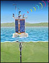This illustration shows a surface buoy connected by power and data cables to a subsurface array of sediment traps, current meters, and other instruments. Some instruments are located in the Shepard Meander of Monterey Canyon. Other instruments are located on the sea floor to the side of the canyon axis. Resuls from the two arrays will help scientists understand how much organic material flows down Monterey Canyon into the deep sea.