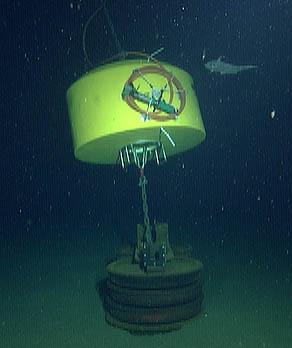 This image taken by ROV Tiburon shows the anchor for the surface buoy (two stacks of railroad-car wheels) and a bright yellow float that keeps the anchor cable off the seafloor. Coiled on the side of the yellow float is the power/data cable from the buoy, with a green underwater plug at the end. ROV Tiburon subsequently attached an