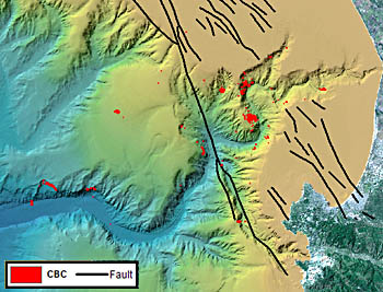 This map of Monterey Canyon shows the locations of chemosynthetic biological communities (CBCs) as red dots. Black lines are faults mapped within the bay. Contrary to scientists' expectations, many of the CBCs are not located near known faults. Image: (c) 2005 MBARI