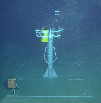 The newly deployed remote instrument node (RIN) 3,500 meters down in the Shepard Meander of Monterey Canyon. Image (c) 2004 MBARI.