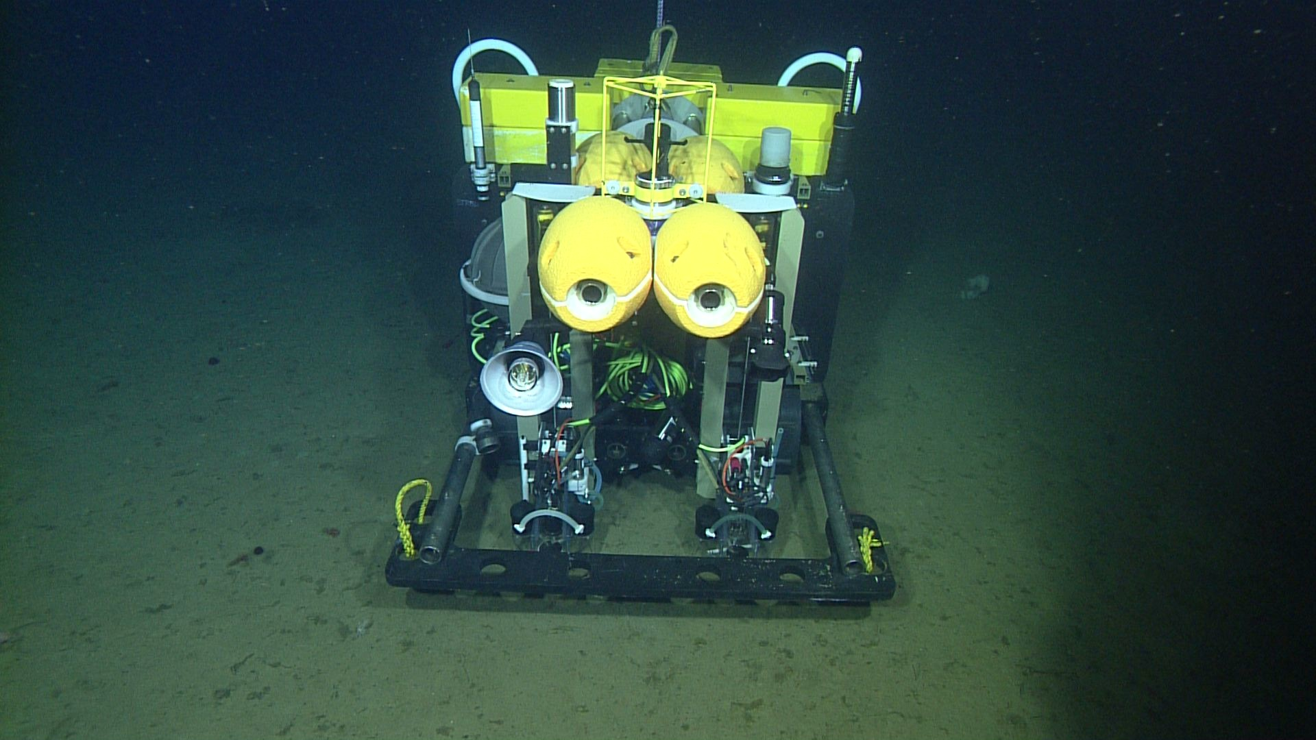 The Benthic Rover facing forward on the seafloor