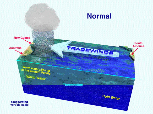 Upwelling case study background information mbari this induces upwelling off the coast of south america click on diagram at left to enlarge ccuart Gallery