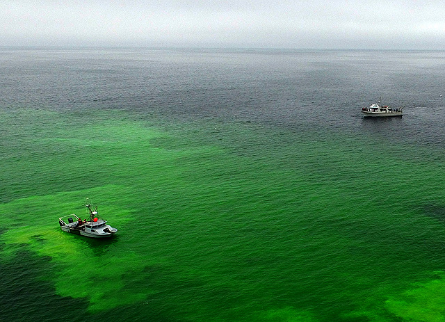 Testing an undersea robot that can detect and map oil spills ...